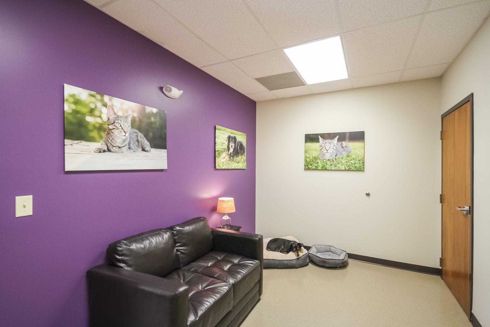 Brawley Animal Hospital 4